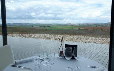 La Vega del Arlanza, un lugar idóneo para unos vinos de altura